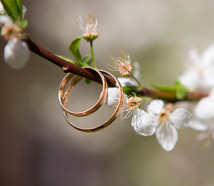 Servicio de organización de bodas entrega de anillos
