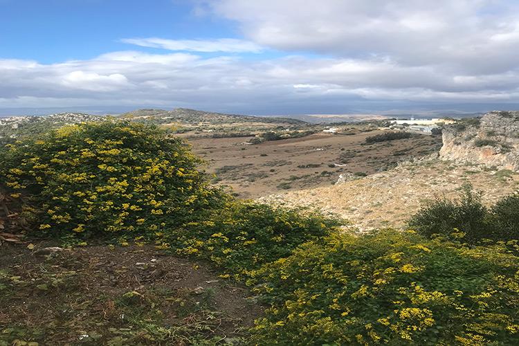 Destino fin de semana entre Cádiz y Málaga